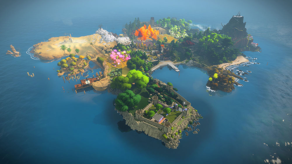 The Witness1